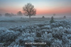 9 лунные сутки