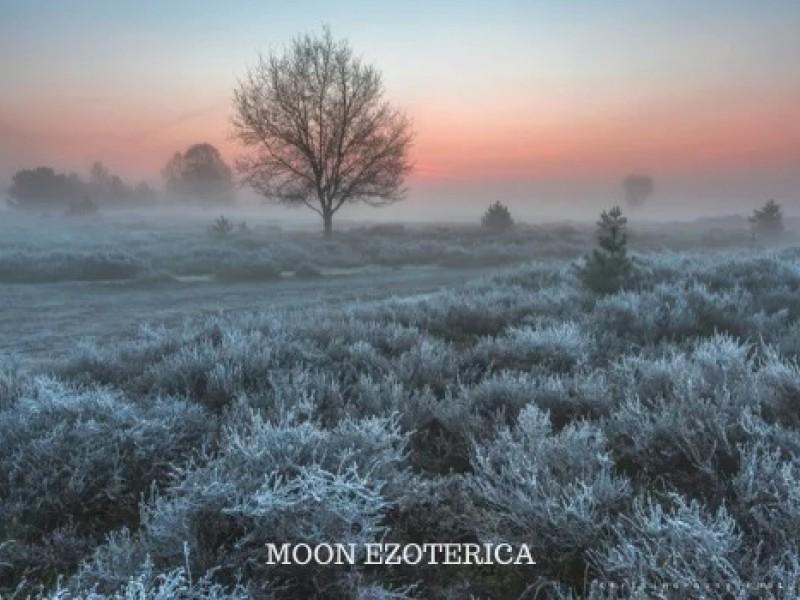 9 лунные сутки>
